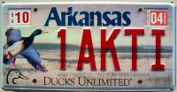 arkansas 2004 ducks unlimited