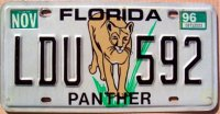 florida 1996 panther