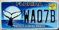 florida 2004 protect florida whales