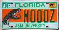 florida 1999 A&M university