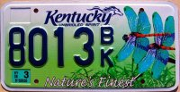 kentucky 2009 nature`s finest.dragonfly
