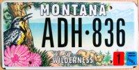 montana 2004 wilderness