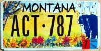 montana 2004 preserve the place