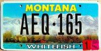 montana 2005 whitefish