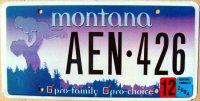 montana 2004 pro family pro choice
