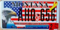 montana 2007 liberty and justice for all