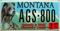 montana 2007 grizzly & wolf