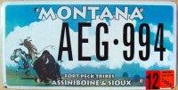 montana 2003 assiniboine & sioux