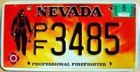 nevada 2004 professional firefighter