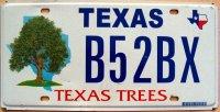 texas texas trees