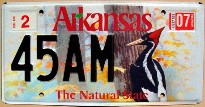 arkansas 2007 woodpecker