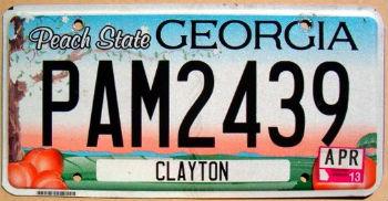 georgia 2013 peach state