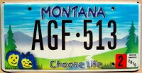 montana 2010 choose life