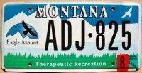 montana 2006 therapeutic recreation
