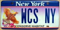 new york conserve habitat