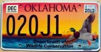 oklahoma 2012 wildlife mallard duck